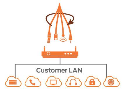 customer_lan_chart
